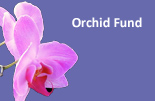 Orchid Fund